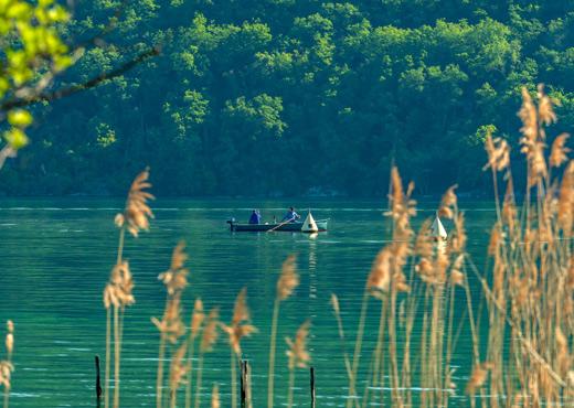 Pêche sur le lac d'Annecy