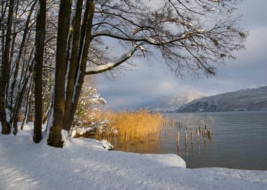 Neige sur les bords du lac
